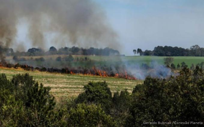 incêndios Mata ATlântica