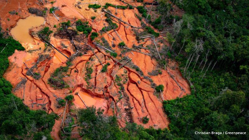 garimpo terras indígenas